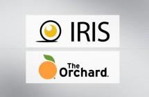 tombstones_iris_orchard